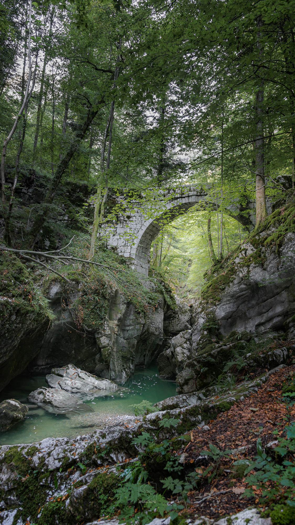 CHARTREUSE<br>Pont St-Bruno